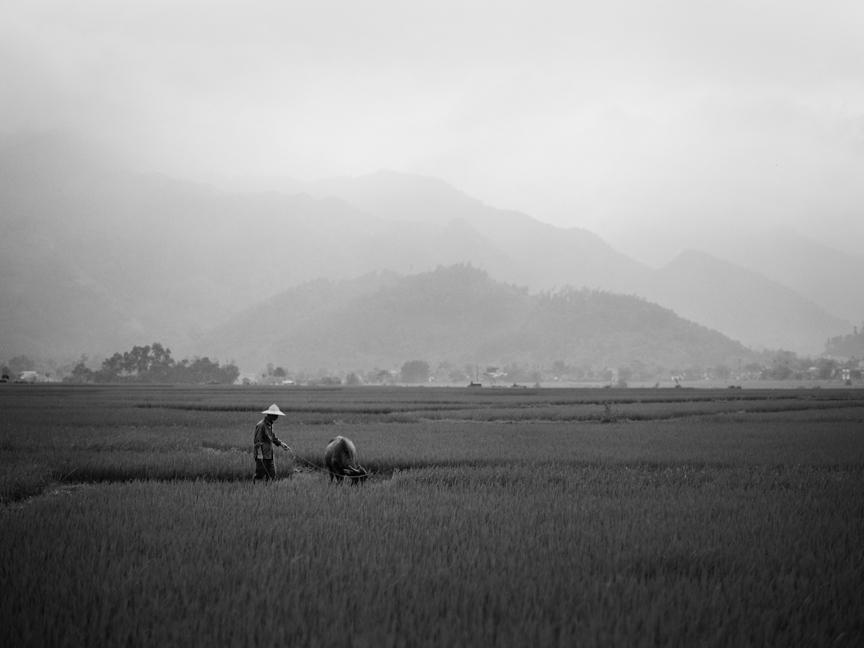 127_Brumley & Wells_fine_art_film_photography_vietnam.jpg