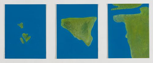 TERRITORIES, 2015    OIL ON PAPER | SIZE 32X24CM