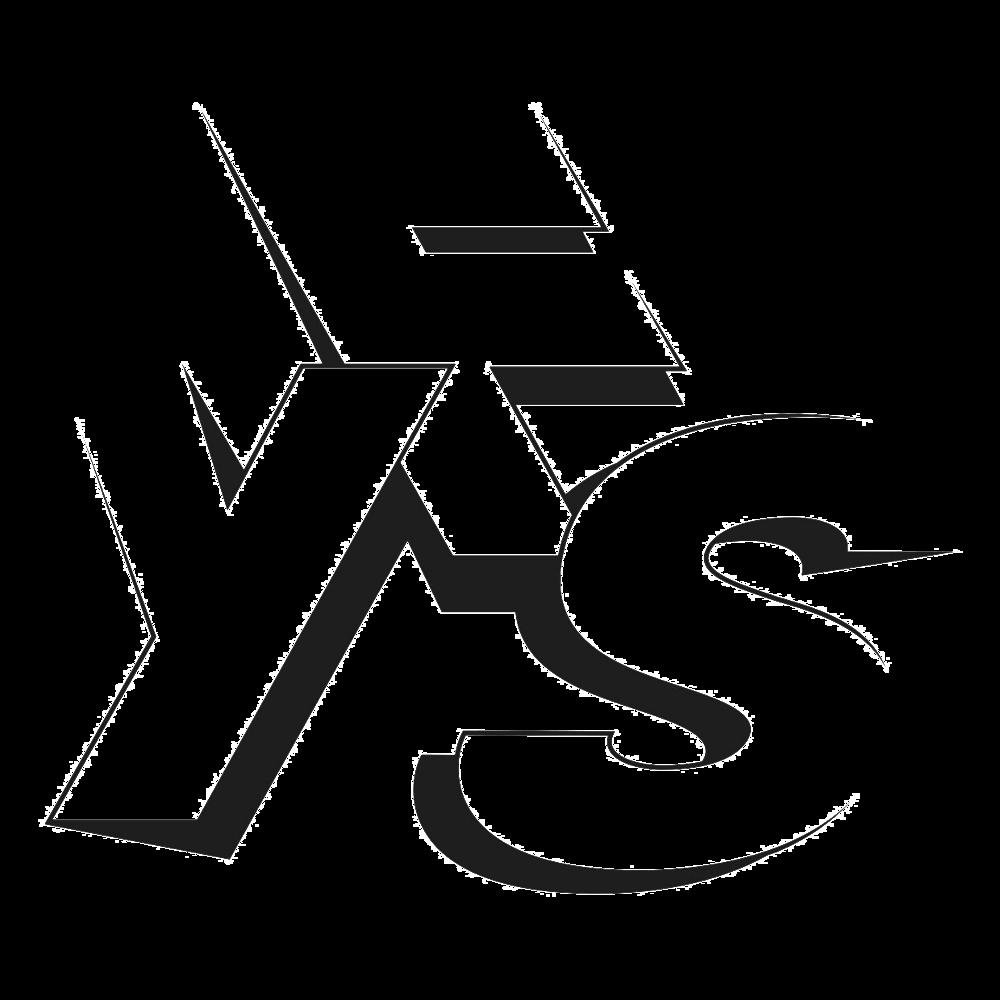 yfs logo blac_preview.png