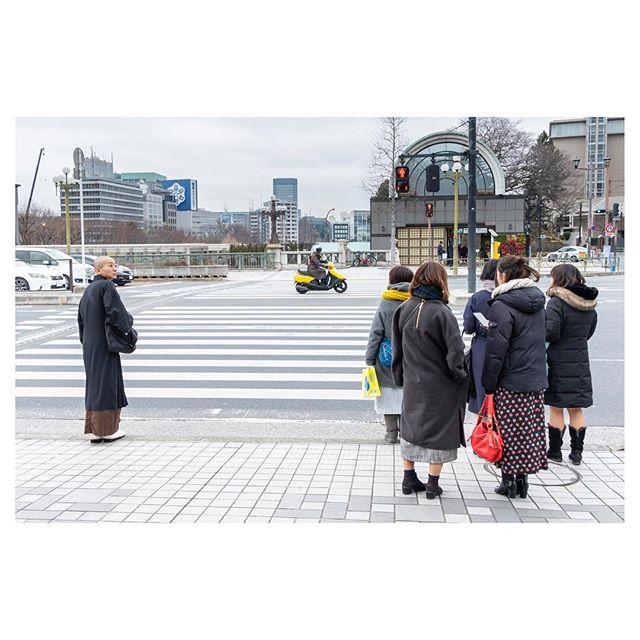 An afternoon around Tokyo testing the Fujifilm X-T20. . . . . . #tokyospc#myspc#streetphotographerscommunity#life_is_street#life_is_street_community#eyeshotmag#lensculturestreets#SPiCollective#friendsinperson #fromstreetswithlove #voidtokyo #frametokyocollective #japan #nightandday #tokyo#streetphotography #urbanstreetphotogallery#fujifilmxt20 #fujifilm #colorphotography #fujifilmxseries