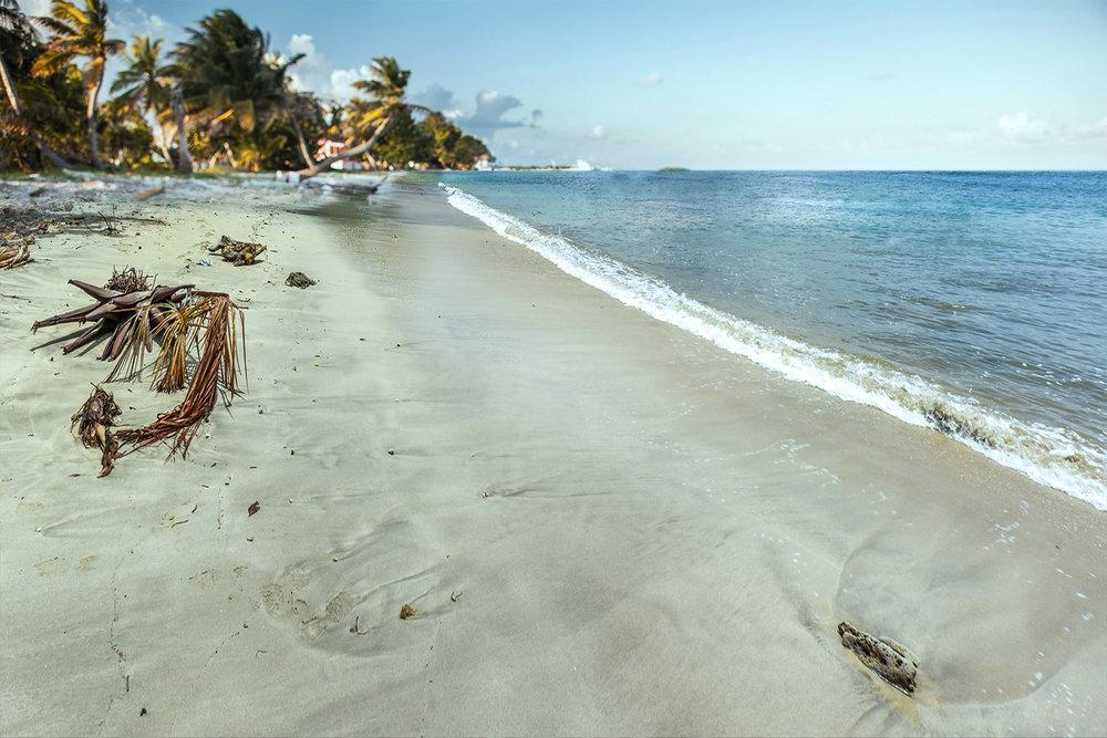 clean beach.jpg