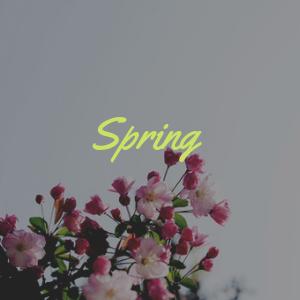 Spring batch.png