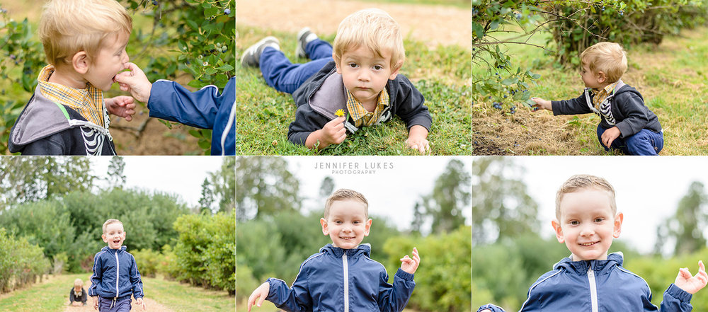 child photos at bellevue blueberry farm