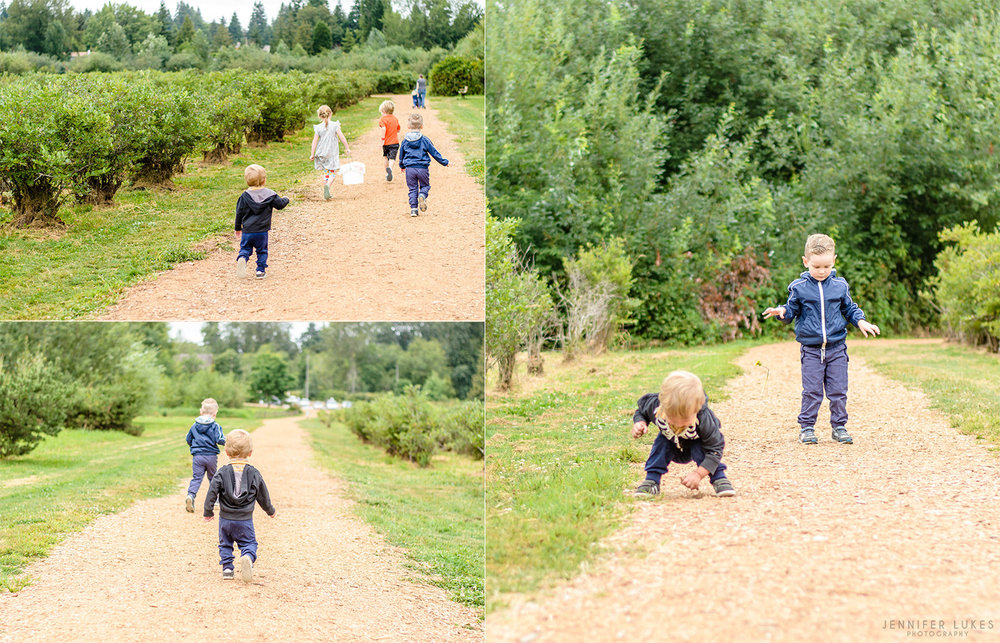 kids running through bellevue blueberry field