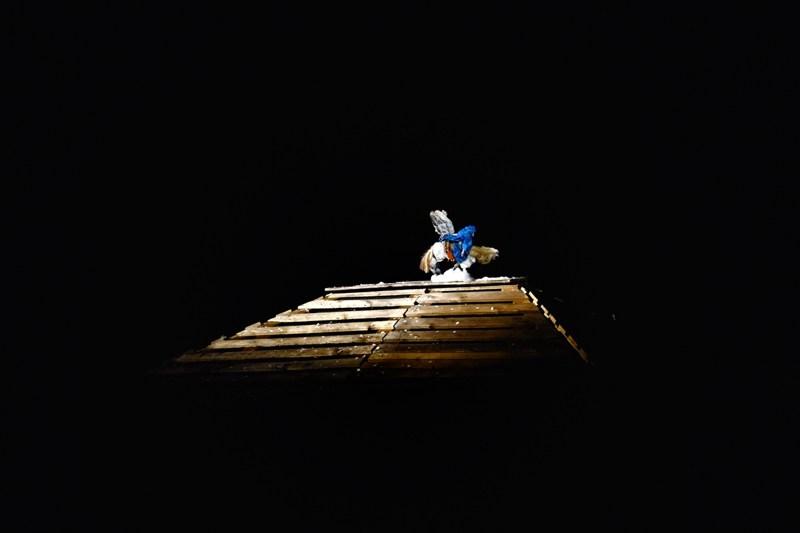 CANTI DEL GUARDARE LONTANO | Teatrino Giullare.jpeg