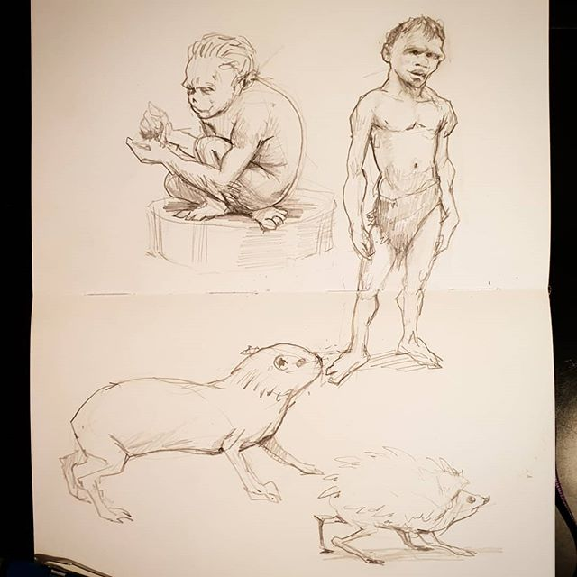 Sketching at the museum today.  Fun fun #Drawing #sketchbook #sketchbook #illustration #museum #pencildrawing #animaldrawing