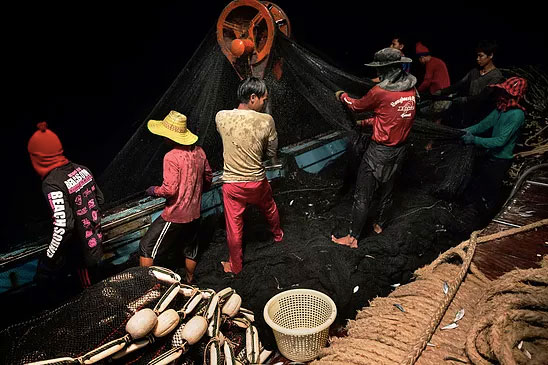 Cambodian migrants hauled in the nets on a fishing boat in the South China Sea. A labor shortage in the Thai fishing industry is primarily filled by using migrants, mostly from Cambodia and Myanmar. ADAM DEAN FOR THE NEW YORK TIMES