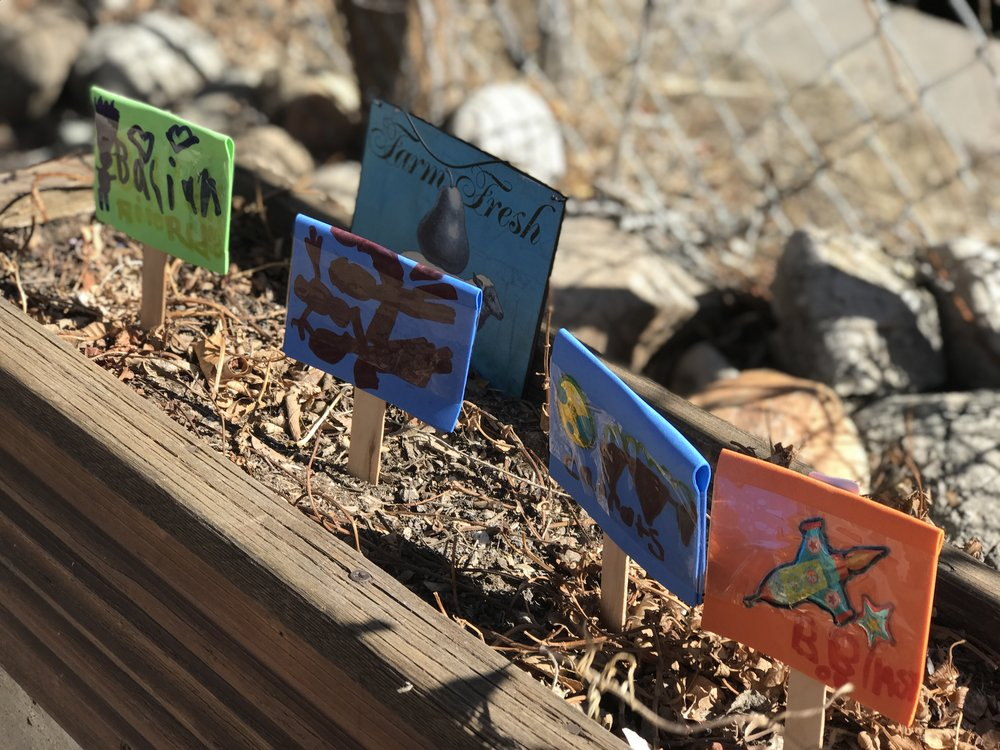 Password Protected - PfCA Garden Day Pt. 1 with Camp Friday -March 2nd, 2018