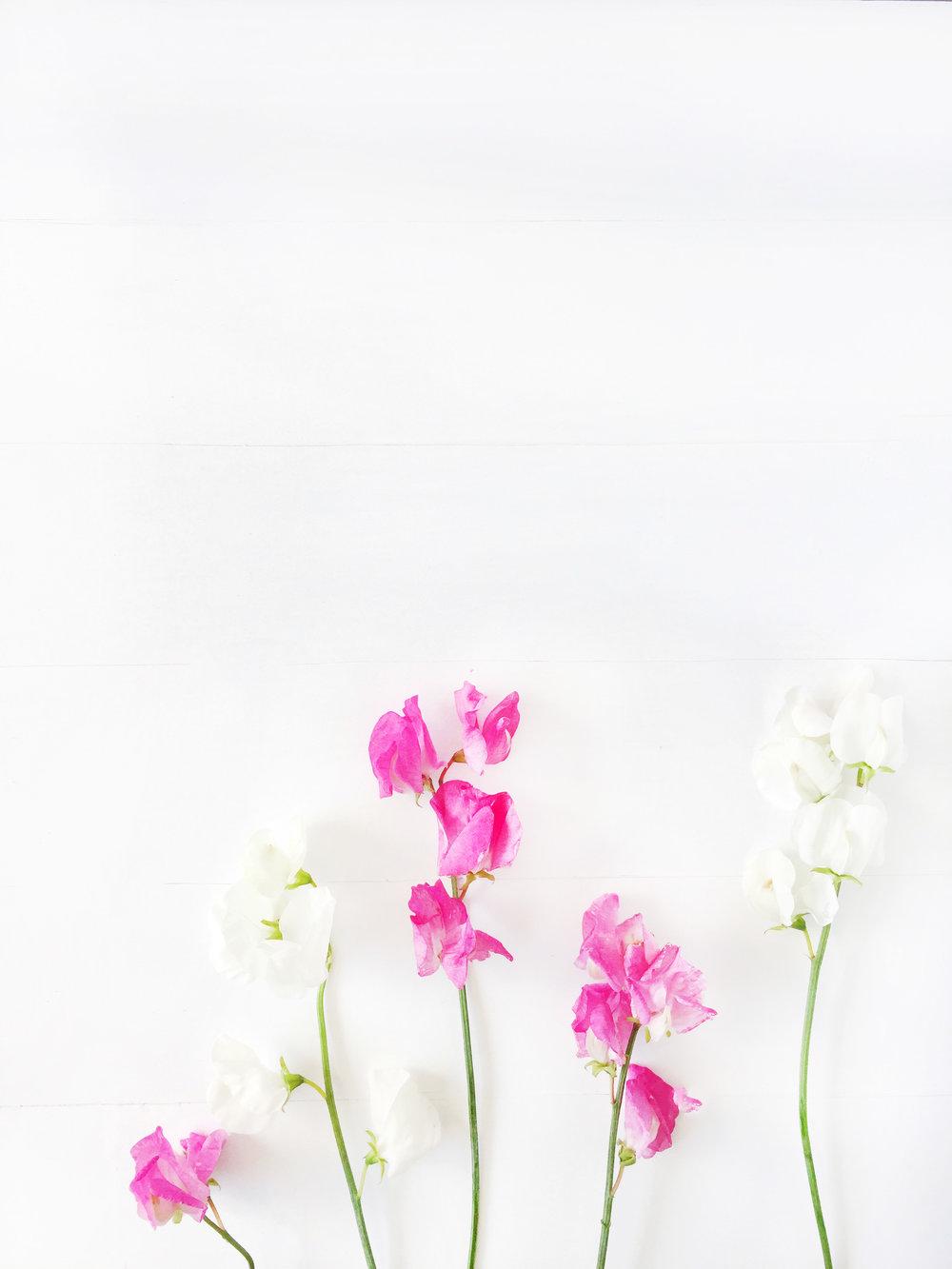 CC_Floral_V4.jpg