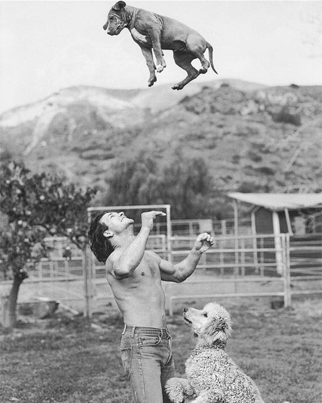Today would've been Patrick Swayze's 65th birthday. Sidekicks in life and throughout his battle with cancer, here is Patrick with his poodle Lucas and Rhodesian Ridgeback Kumasi. #RIP #patrickswayze