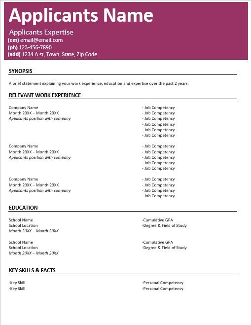 Resume Style #3 -