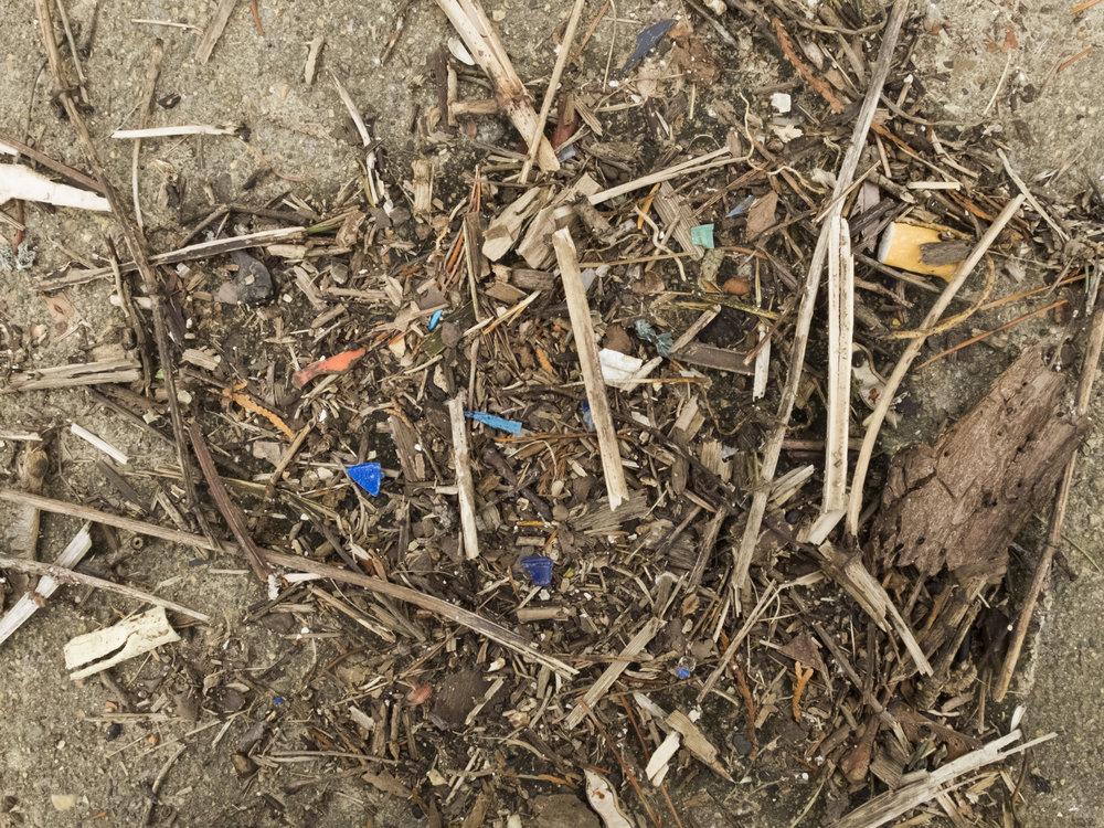 Found; composite organic matter and plastic debris. Providence, RI. Winter 2018.