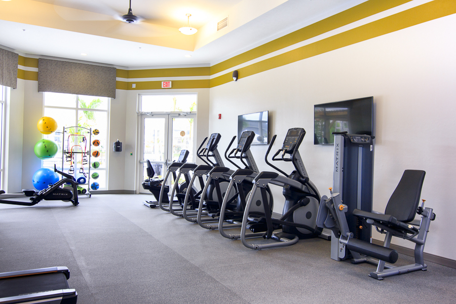 Interactive Fitness Equipment