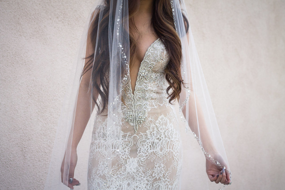 Veil: Erin Cole Dress: Berta