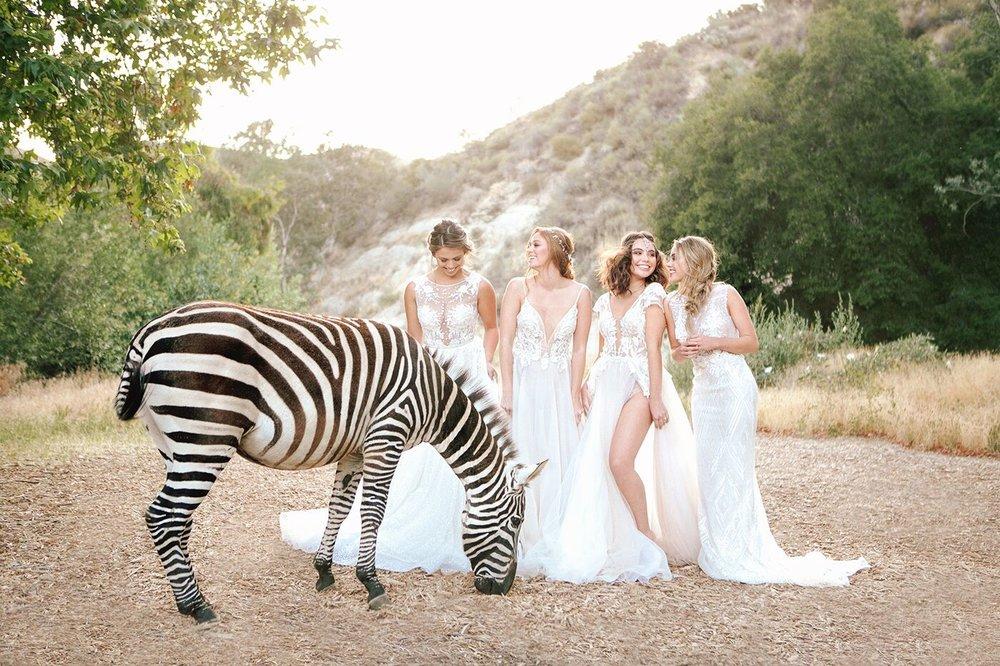 Wild Glam Bridal Inspo_096_preview.jpeg