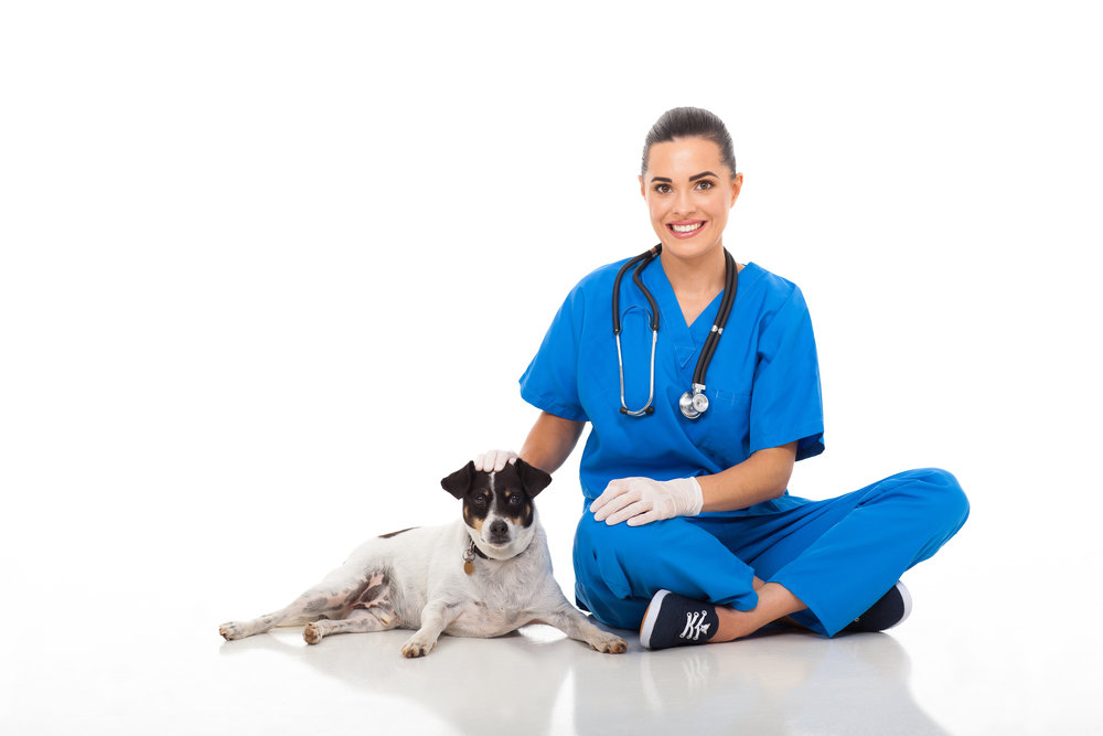blue-vet-woman-with-dog.jpg