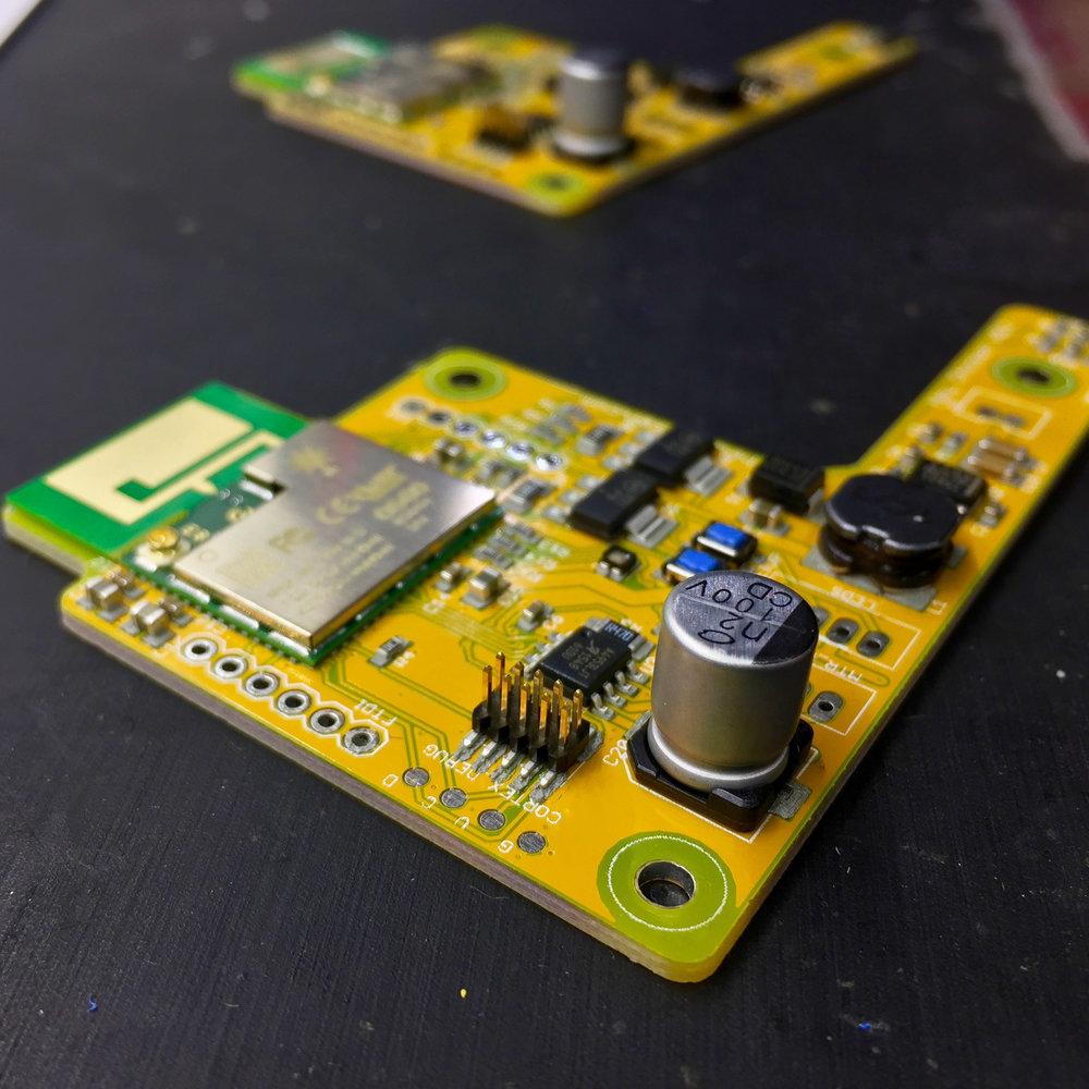 card board - 1.jpg