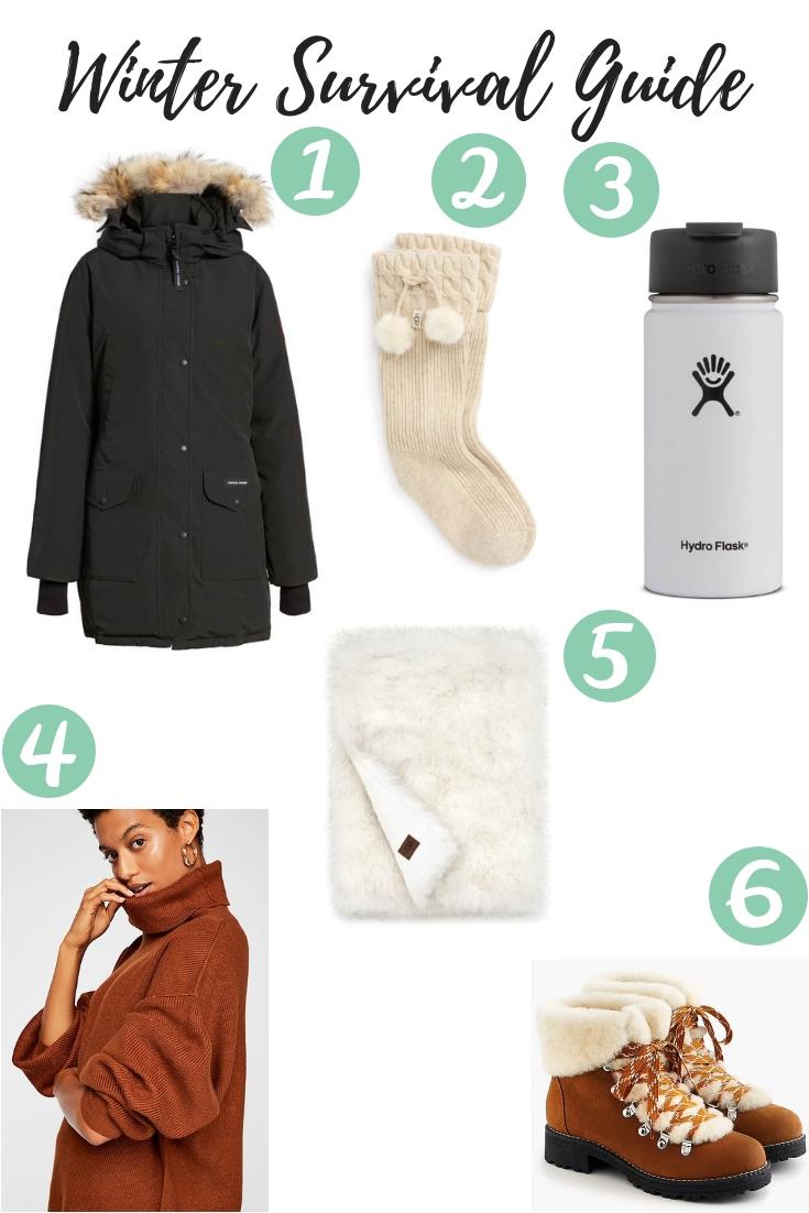 Winter Survival Guide (1).jpg