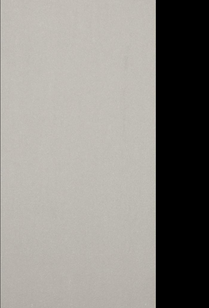 apollo ash 12 x 23.5 12 x 23.75 natural, rough, polished