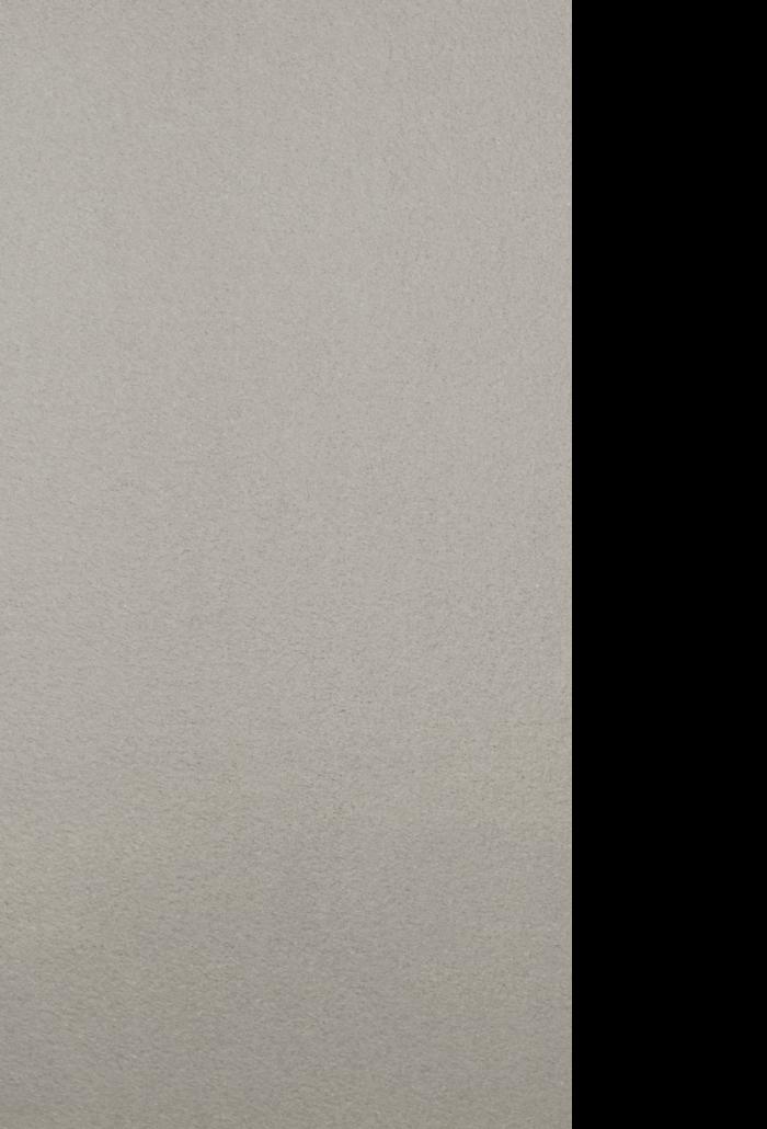 apollo grey, 12 x 23.75 natural, rough, polished