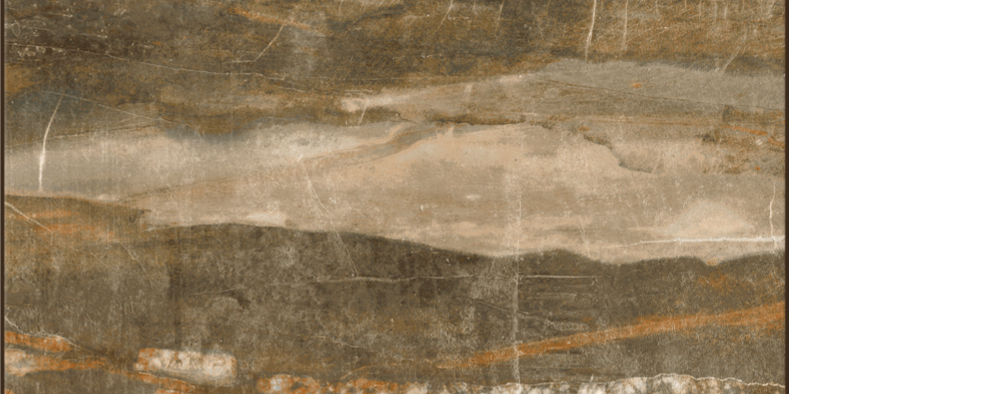 "Pearl porcelain floor tile Forest, brown 12"" x 24"""