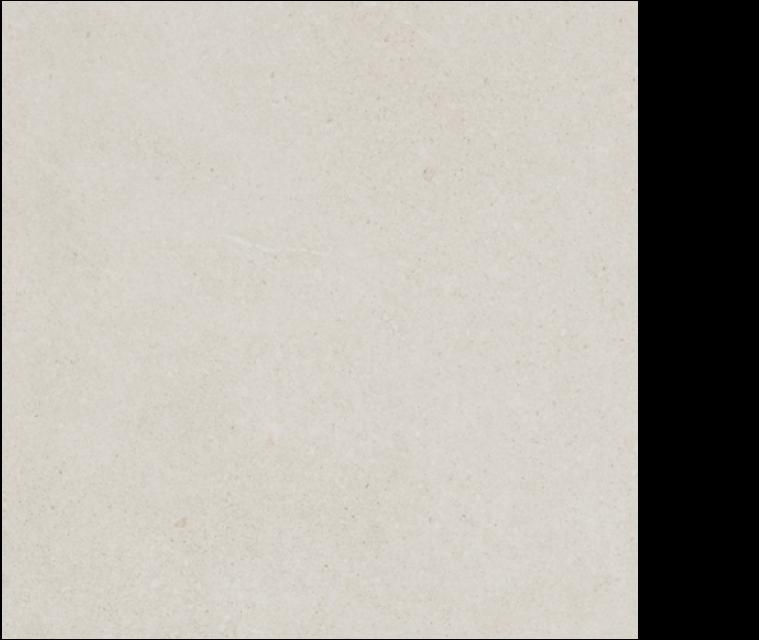 pietra italia porcelain tile 24' x 24' white