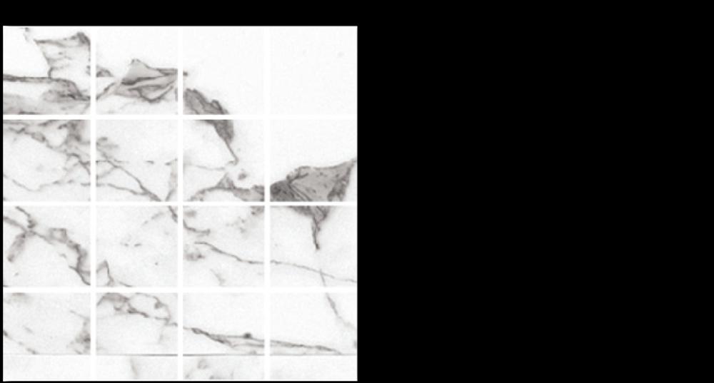 vql-porcelain-12-x-12-mesh-venato