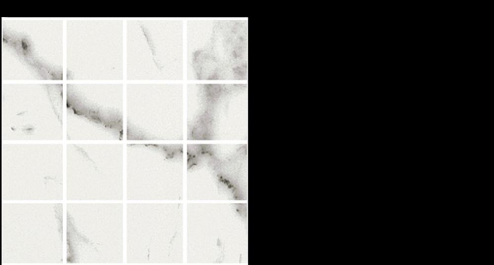 vql-porcelain-12-x-12-mesh-quary