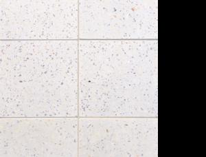 Terrazzo Field Statements Tile