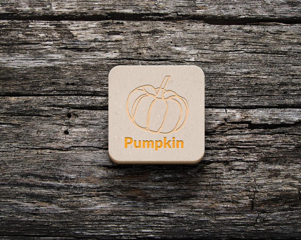 Coaster-Logo-Mockup.jpg