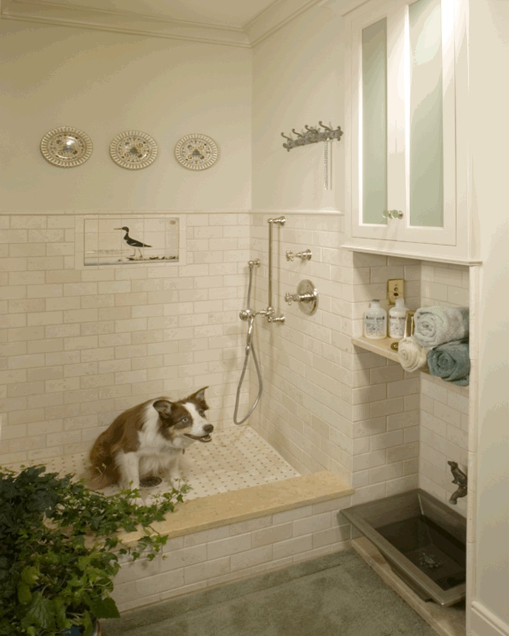 Dog Bathroom - Often we would like our four legged friends to have their own space to clean up and access to fresh drinking water. We enjoy designing spaces for all members of your family.