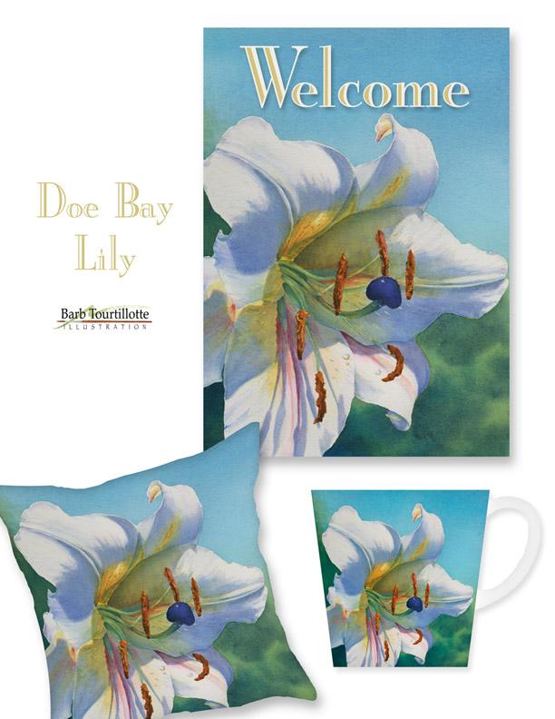 Doe Bay Lily pg 72.jpg