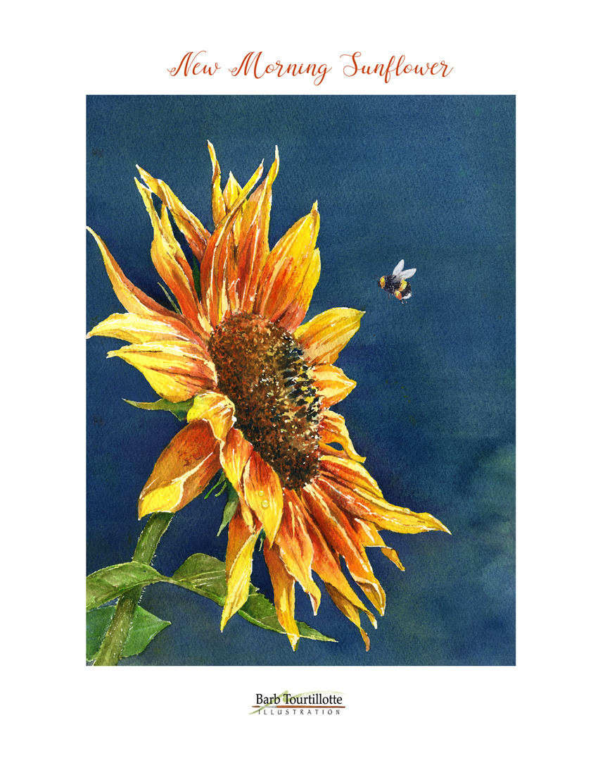 New Morning Sunflower pg copy.jpg