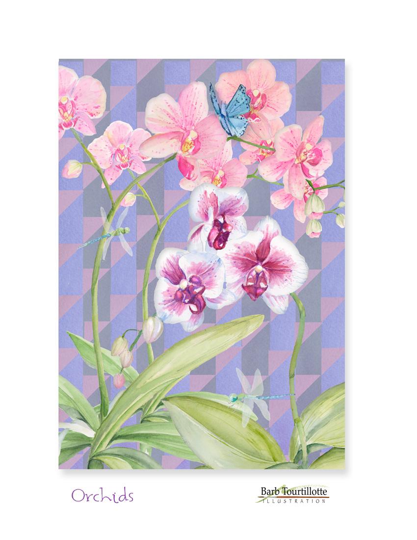 Orchids ver.jpg