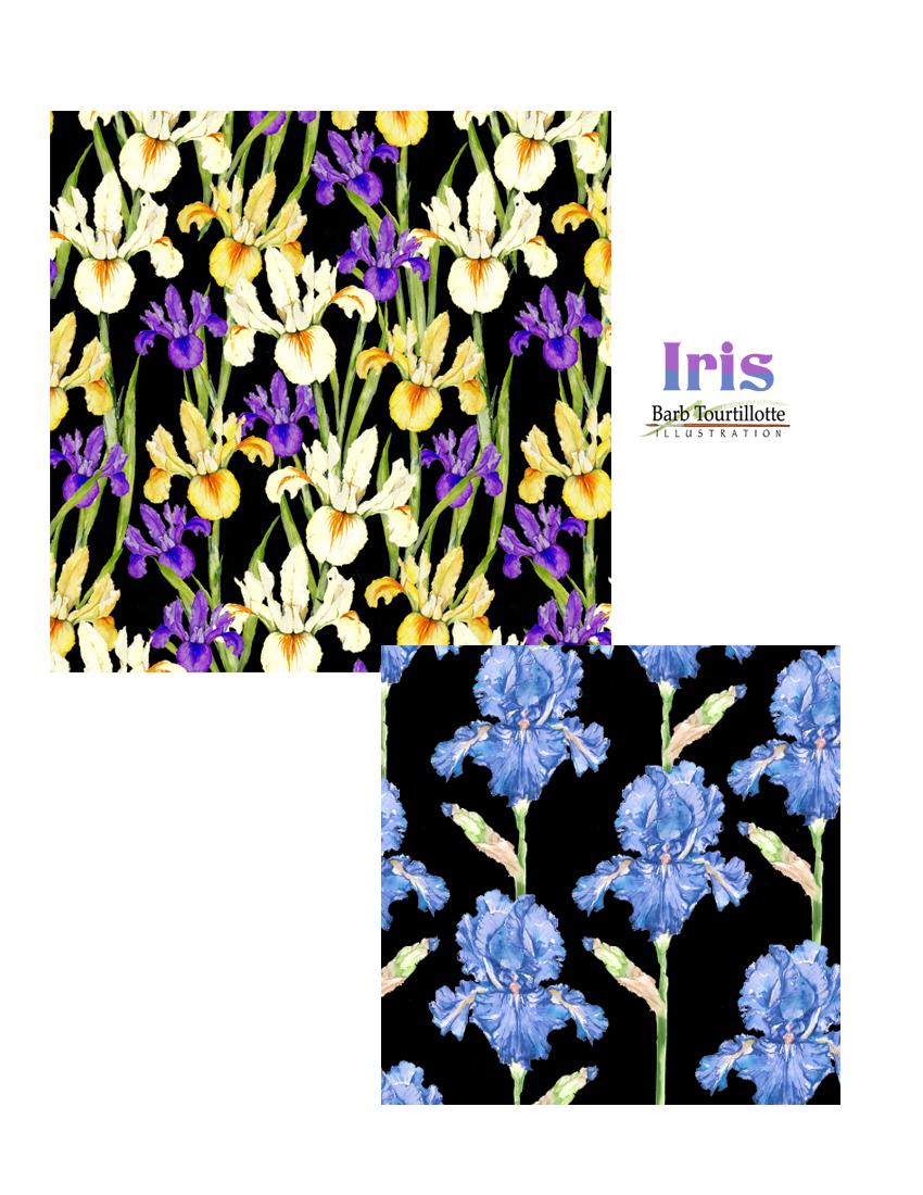 Iris pg copy.jpg