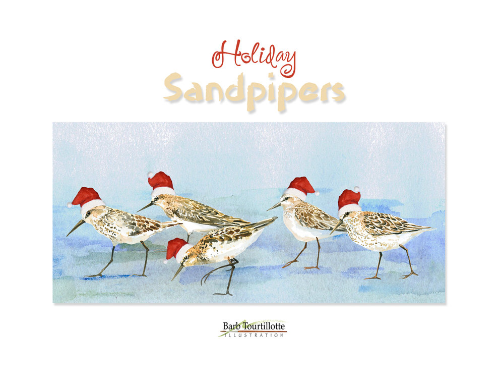 Holiday Sandpipers pg copy 2.jpg