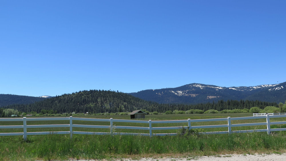 Bucks Lake - Sierra City 3.jpg