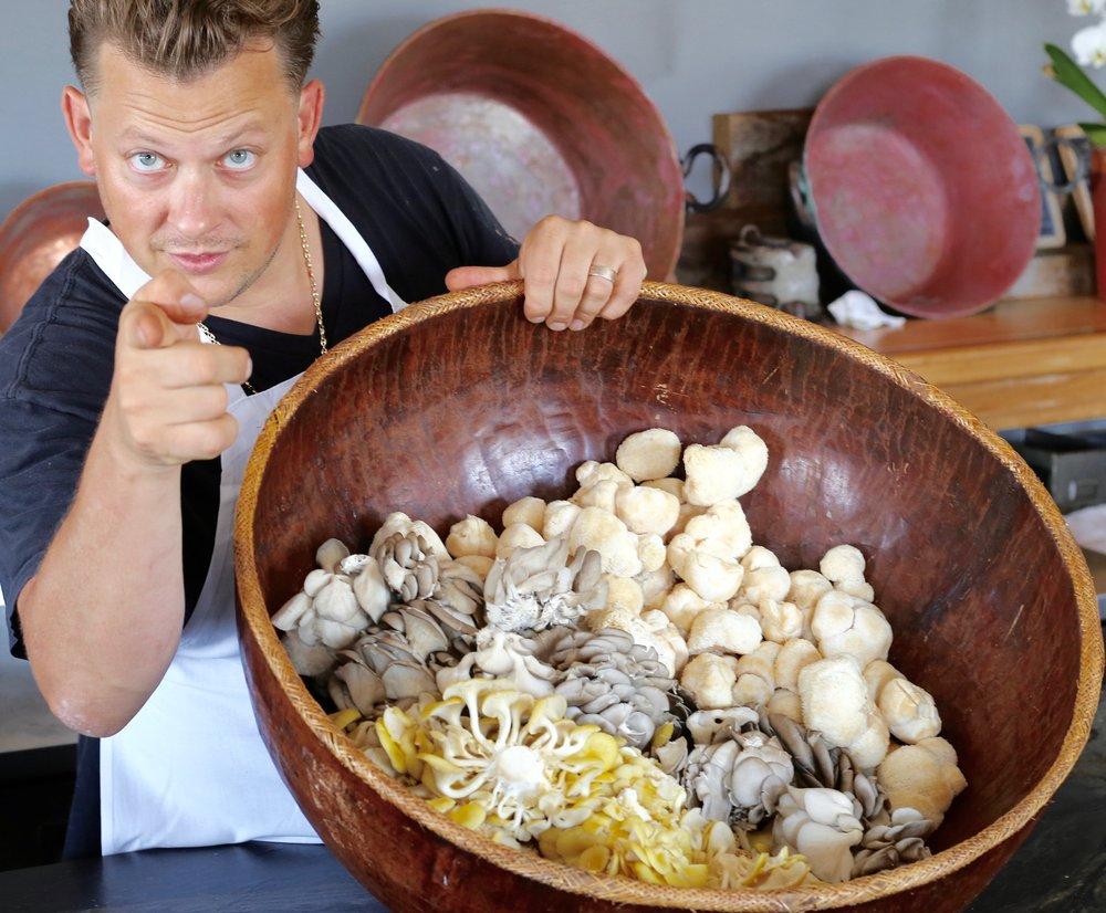 Hillside Farm Mushroom Company RI stunning mushroom galore