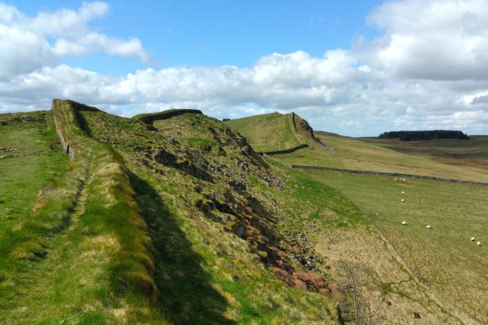 Hadrians Wall and Sheep Thumb.jpg