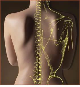JUICEBOSS HQ chiropractic 2.jpg