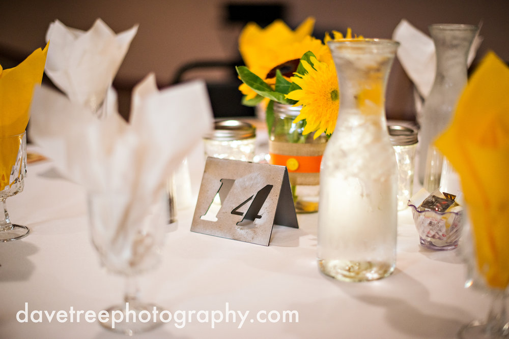 lake_michigan_wedding_photographer_st_joseph_27.jpg