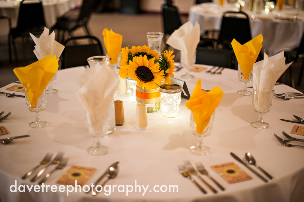 lake_michigan_wedding_photographer_st_joseph_26.jpg