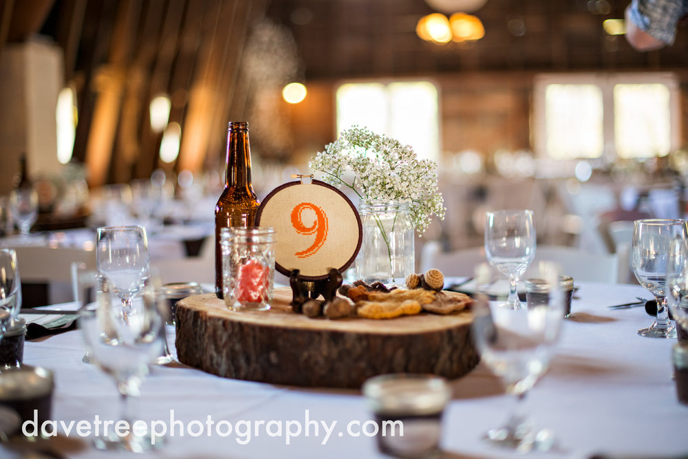benton_harbor_wedding_photographer_blue_dress_barn_74.jpg