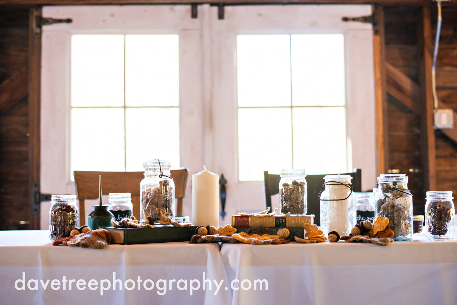 benton_harbor_wedding_photographer_blue_dress_barn_82.jpg