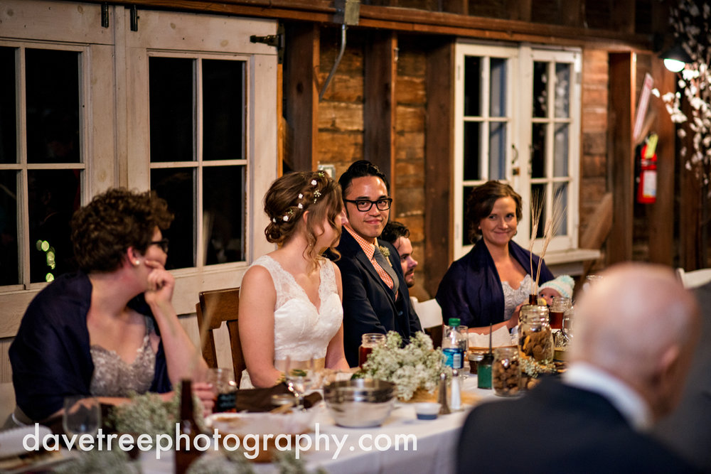 benton_harbor_wedding_photographer_blue_dress_barn_113.jpg
