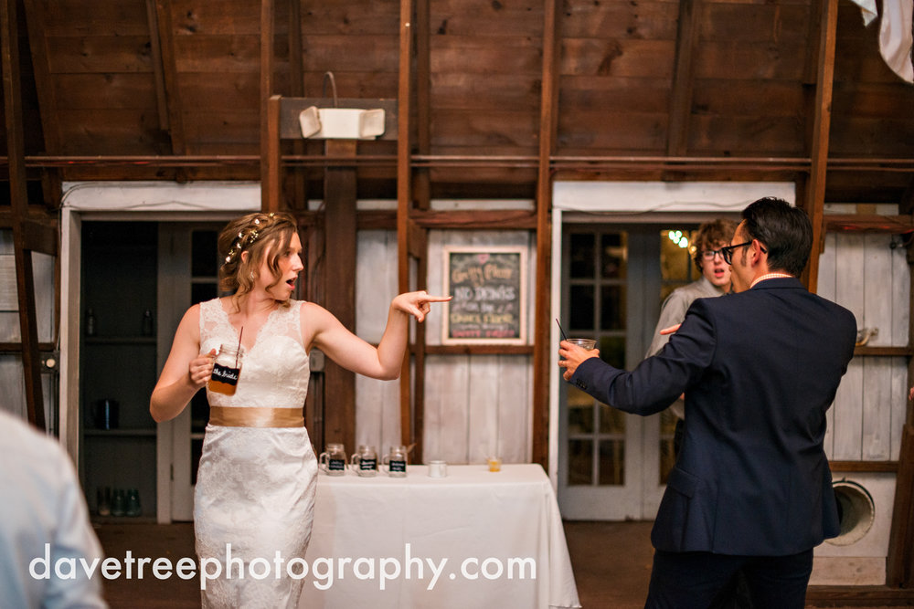 benton_harbor_wedding_photographer_blue_dress_barn_55.jpg