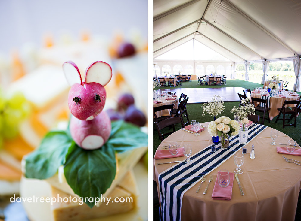 michigan_vineyard_wedding_photographer_davetree_photography_389.jpg