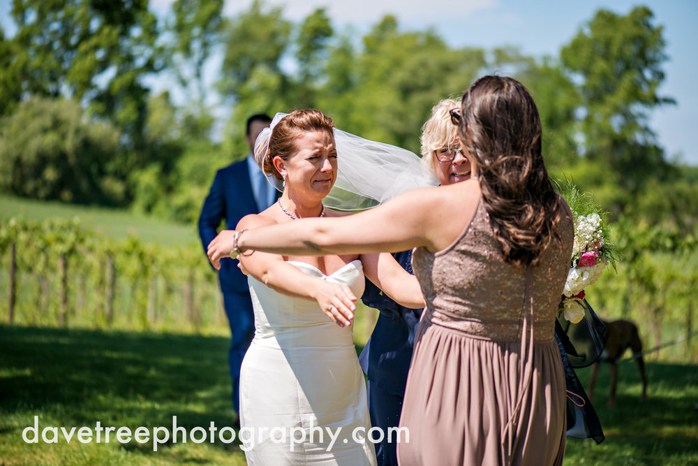 michigan_vineyard_wedding_photographer_davetree_photography_478.jpg