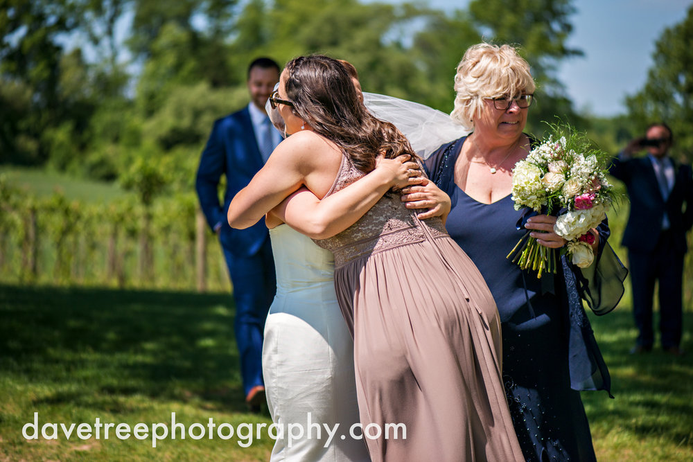 michigan_vineyard_wedding_photographer_davetree_photography_479.jpg