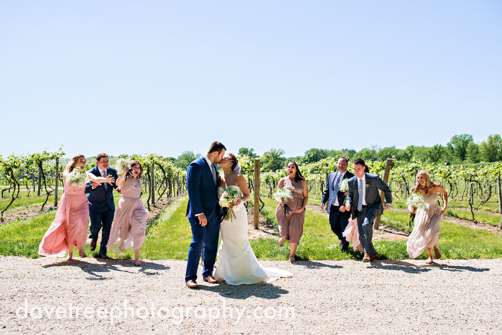 michigan_vineyard_wedding_photographer_davetree_photography_487.jpg